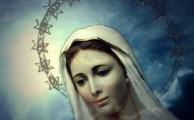 Programma Messa Immacolata, 8 dicembre ore 11