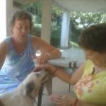 Foto del profilo di Teresina Bertocchi